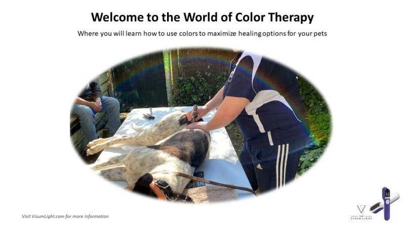 light therapy colors